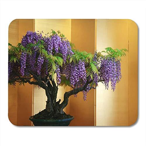 Luancrop Mauspads Purpurroter asiatischer Glyzinie-Bonsai-Innenbaum auf Gelbgrün-Mausunterlage für Notizbücher, Tischrechnermatten Büroartikel