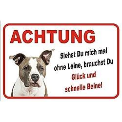 """Schild Vorsicht American Pit Bull Terrier""""Ohne Leine"""" 15x20 oder 20x30 (20x30cm)"""