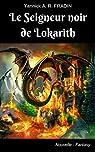 Le Seigneur noir de Lokarith par Fradin