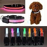 Solar Energy Power & USB wiederaufladbar Hund Safty Halsband mit Quick Release Schnalle Puppy LED-Halsband bietet ultimativen Hund Visibility–Wasserdicht–Preis XES