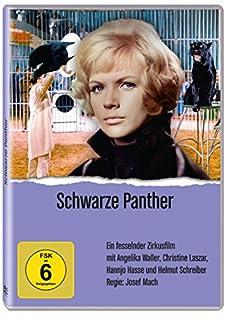 Schwarze Panther