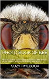Photo Book of Bee: Photo Book, Photo Album of Bee, art & photography close-up for 80+ pictures, amazing  variety of bee in the world.