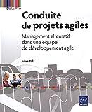 Conduite de projets agiles - Management alternatif dans une équipe de développement agile
