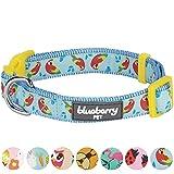 Blueberry Pet Statement Lustiger Papagei Designer Hundehalsband, Hals 37cm-50cm, M, Verstellbare Halsbänder für Hunde