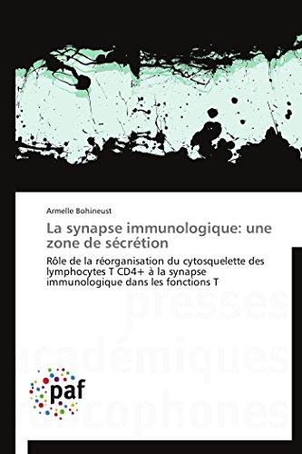 la-synapse-immunologique-une-zone-de-scrtion