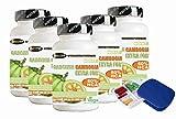 Garcinia Cambogia Extra Forte 1000 5 Confezioni 60 Compresse Porta Pillole Omaggio Bruciagrassi Favorisce la Perdita di Peso 60% di HCA Anti fame Riduce Appetito NO Glutine 100% Naturali Vegan
