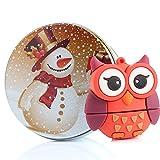 USB Memory Stick USB Flash Drive Rose Cute Lovely Owl Animal avec porte-clés Cadeau/cadeau 8g/16G/32G/64G 16G Bonhomme de neige