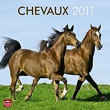 Chevaux 2011 Calendar