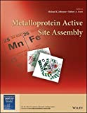 Metalloprotein Active Site Assembly (EIC Books)
