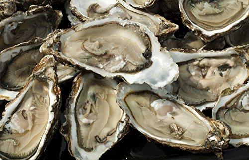 Poissonnerie com - 1 douzaine d'huîtres fines de Bretagne N°3