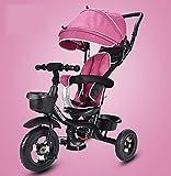 SSRS Bicicleta Triciclo Bebe,Triciclo Infantil NiñO +18 Meses Pedales con Capota Extraíble Plegable Barra Telescópica para Padres Triciclo de Empuje, Pink