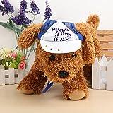 Calli Chien baseball sportif Chapeau de produits pour animaux de compagnie bleu rouge frais