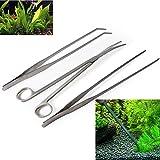 Winstory 3 in 1 Aquarium-Behälter-Wasserpflanze Paspelband Werkzeug-Satz Edelstahl Gebogene Pinzette und Schere für Live DieWasserpflanzen