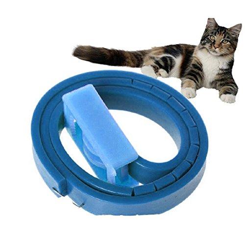 Collare antipulci per gatti, impermeabile, con meccanismo di rilascio di sicurezza (confezione da 1)