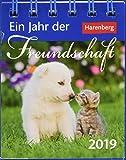Ein Jahr der Freundschaft - Kalender 2019