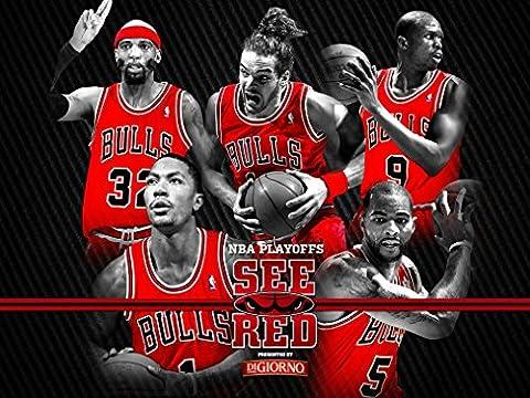 Chicago Bulls Customized 19x14 inch Silk Print Poster/WallPaper Great Gift
