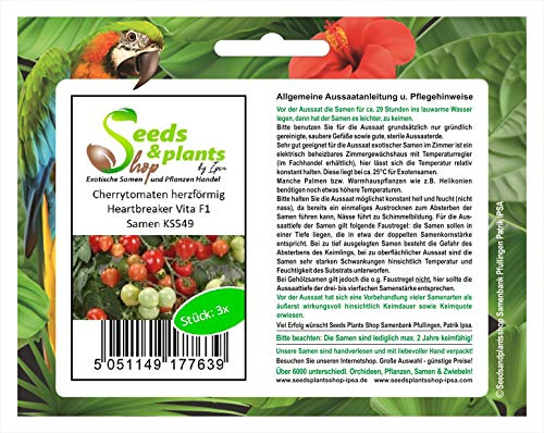 Stk - 3x Cherrytomaten, herzförmig, Heartbreaker Vita F1 - Tomaten Samen Gemüse KS549 - Seeds Plants Shop Samenbank Pfullingen Patrik Ipsa