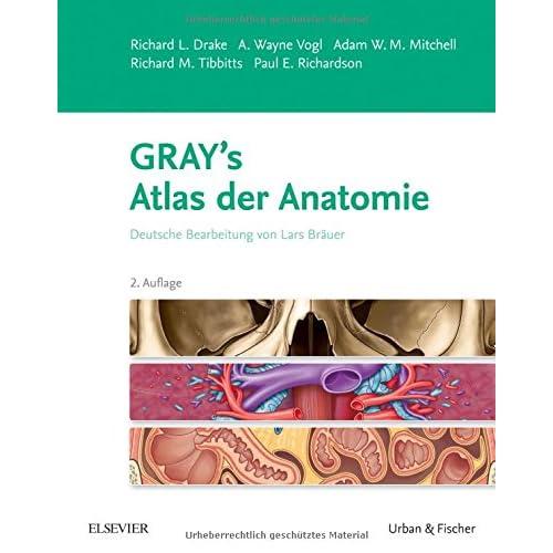 PDF] Gray\'s Atlas der Anatomie: Deutsche Bearbeitung von Lars Bräuer ...