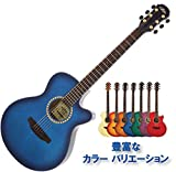 Aria tg1sbl Gitarre