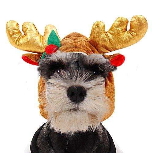 PAWZ Road Weihnachten Hut Harrklemme Schmuck f¨¹r Hund und Katze im Hirsch-Design S