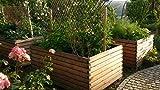 Gartenfrosch Hochbeet aus Lärchenholz 180×120x80