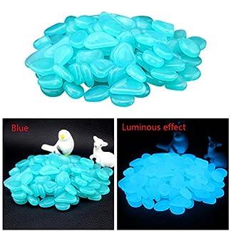 hunpta 100 Glow in Dark Pebbles Stone Home Garden Walkway Aquarium Fish Tank (Blue) 51bq9ZUWL6L