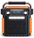 ION Wireless All-Weather Rugged Speaker