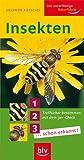 Insekten: Treffsicher bestimmen mit dem 3er-Check 1... 2... 3... schon erkannt! - Siegfried Rietschel