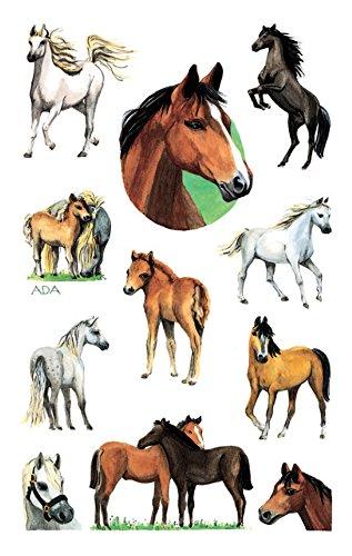 avery-zweckform-53198-ninos-pegatinas-63-adhesivo-color-caballos