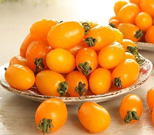 Originalverpackung Tomatensamen Gelb Kirschtomate Organisch Klein Tomate Balkon Obst und Gemüse – ca. 20 Stück