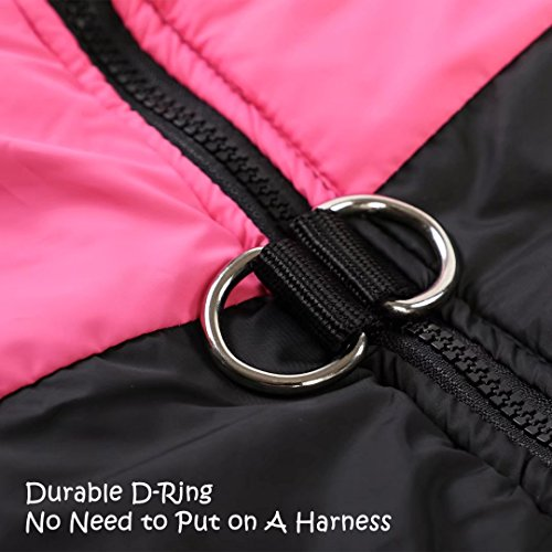 Hundemantel Winter – Wasserdichte Winterjacke mit D-Ring - 5