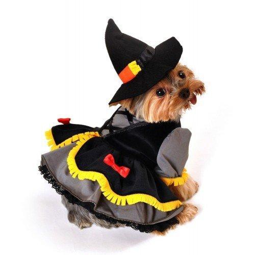 Kostüm für Hunde Katzen Welpen Deluxe Halloween Hexe Geschenk Schick XS-XL - (Hexe Katze Tragen Kostüm)