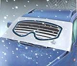 Frostschutz-Abdeckung / Eisschutzfolie für Windschutzscheiben