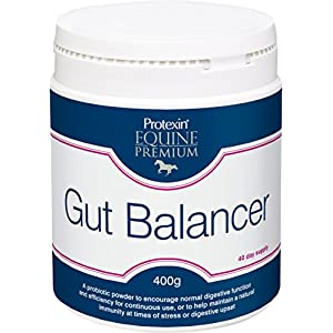 Protexin Equine Premium Gut Balancer (Size: 400g)