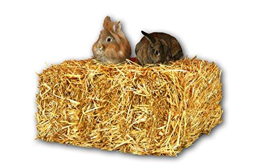 Stroh 15kg Strohballen Einstreu Kaninchen Meerschweinchen Hase Deko Heu Scheune