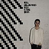 #3: Noel Gallagher s High Flying Birds