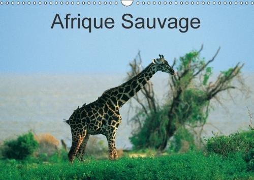 Afrique Sauvage 2018: Au c/Ur De La Nature De La Faune Et Des Ethnies.