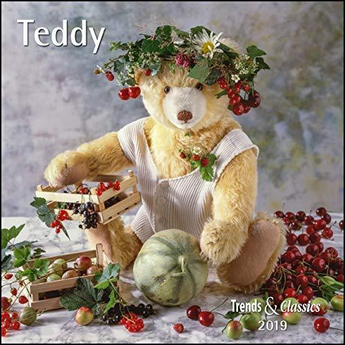 Teddy 2019 - Broschürenkalender - Wandkalender - mit herausnehmbarem Poster - Format 30 x 30 cm (Teddybären Sammlerstücke)