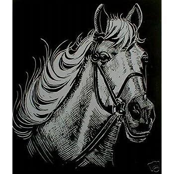 Kratzbild Kratzbilder  Pferde Goldfolie Größe 20cm x 25 cm Komplettset Neu