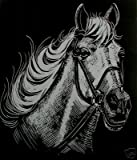 WASO-Hobby - 4er Scrapy Kratzbilder Set - 4 Kratzbilder - Pferde Motive / Silber *Groß*