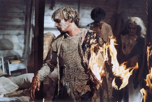 Image de L'Enfer des zombies [Édition Collector Blu-ray + DVD + Livre]