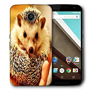 Snoogg Cute Animal Printed Protective Phone Back Case Cover For LG Google Nexus 6