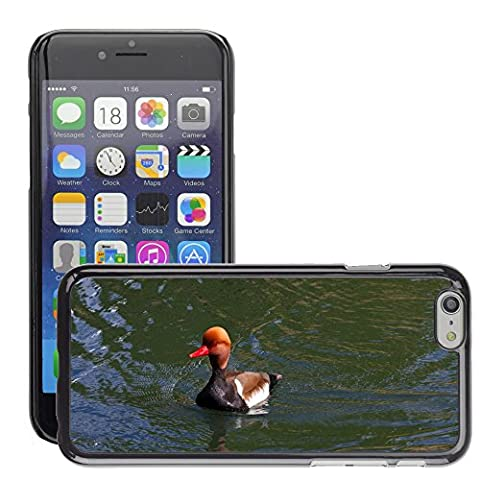 Just Phone Cover Hard plastica indietro Case Custodie Cover pelle protettiva Per // M00139732 Pochard Red Headed Pochard Canard // Apple iPhone 6 6S 6G PLUS 5.5