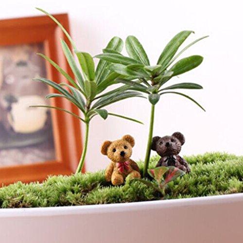 petsola 10x Miniatur Tier Tierwelt Puppenhaus Landschaft Bonsai DIY Craft Dekor - Bär -