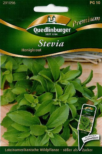 Stevia, Süßkraut