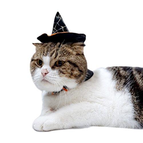 Katze Halloween Hat Pet Dog Kostüm Hexe Hat Pet Party Kleidung Pet Katze Hexe Hat für Halloween verstellbar Hat & Cape ()