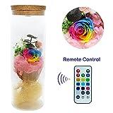 Flores frescas preservadas-Forever Rainbow Rose en un vaso con 13 luces de color LED, flor inmortal que brilla intensamente con control remoto, el mejor regalo para el día de San Valentín aniversario de boda cumpleaños