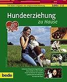 Hundeerziehung, zu Hause