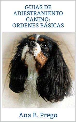 Guias de adiestramiento canino: ordenes básicas: Curso de adiestramiento canino en positivo: ordenes básicas