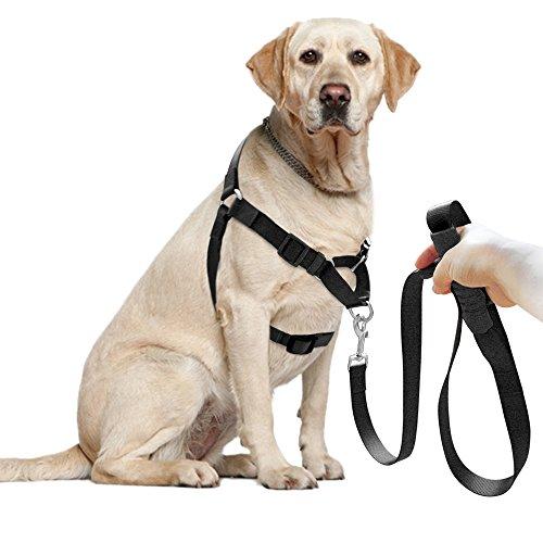 Berry verhindert Zerren Nylon Hundegeschirr & Leine Set, vorne Leine für leicht Laufen, Training, Klettern und Wandern